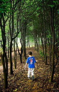BURHAN si Anak Hutan