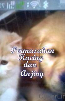 Permusuhan Kucing dan Anjing