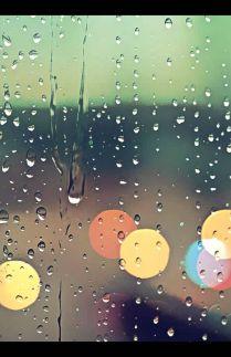 Bulan Hujan - November