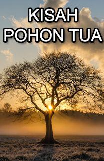 KISAH POHON TUA