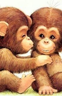 Cinta Monyet Raka dan Syifa