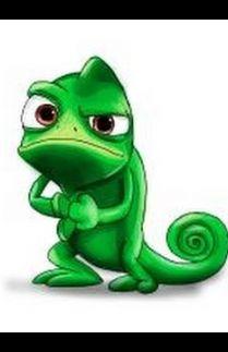Lizard And Me
