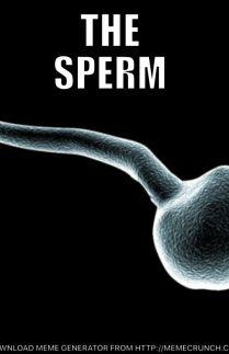 The Sperm