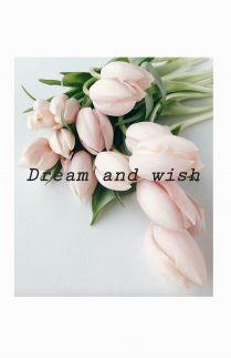 Dream and Wish