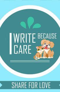 I Write Because I Care Project